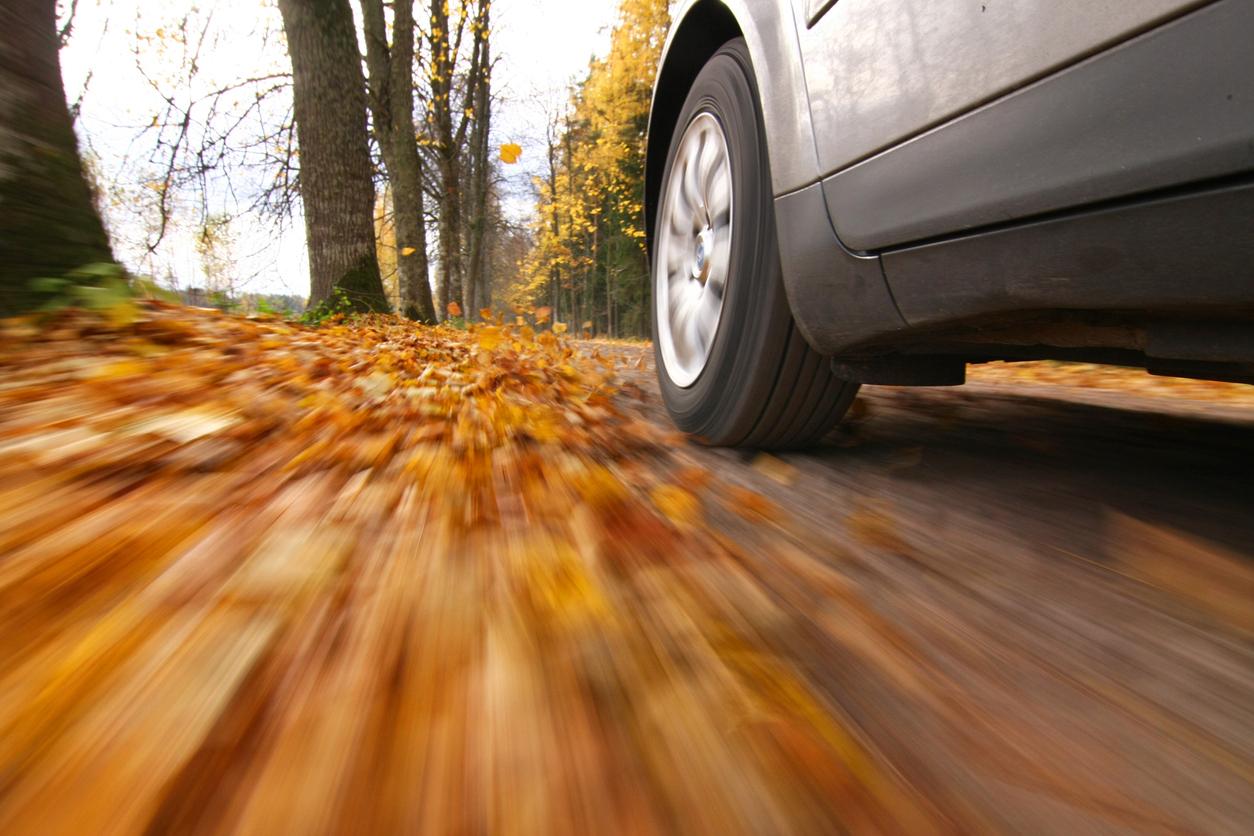 Fall Auto Loan